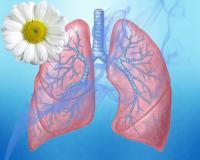 Заболеваемость туберкулезом в области снижается